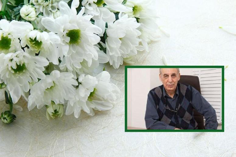 حبیب انصارین