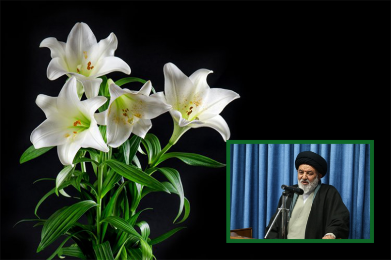 حجت الاسلام سید ابو تراب موسوی